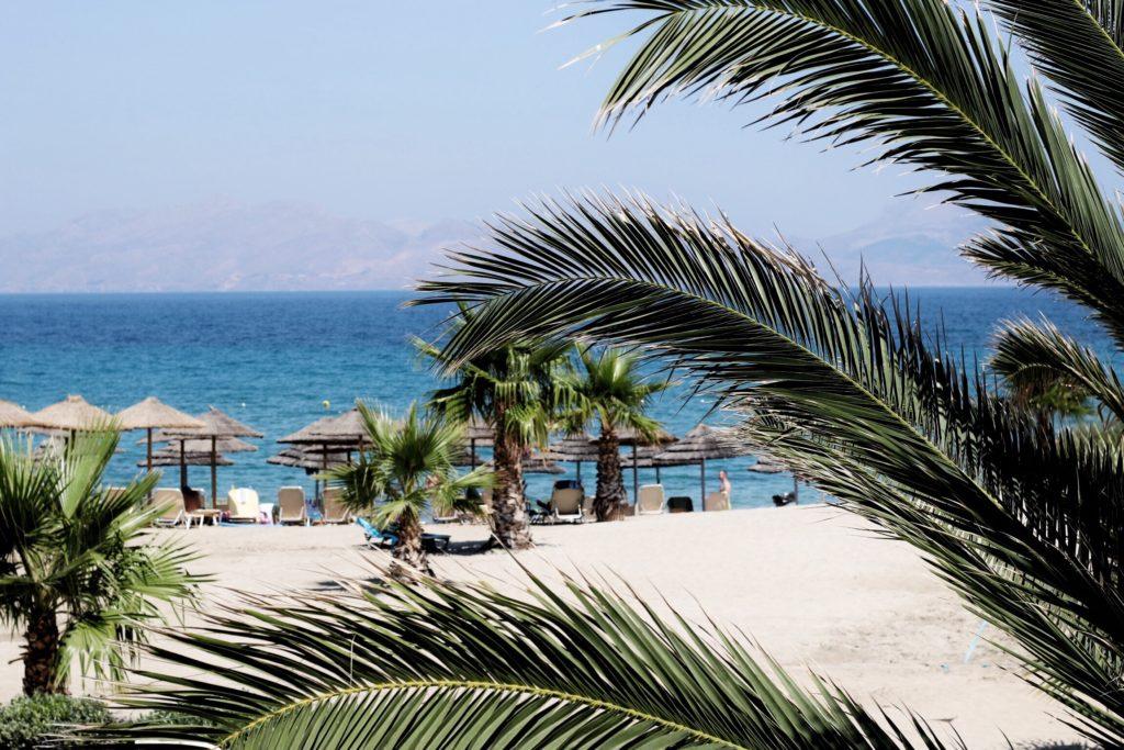 Palmen am Mastichari Strand